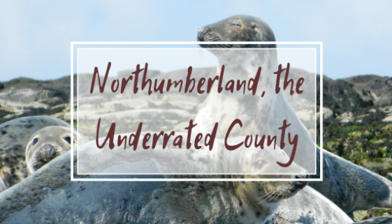 NORTHUMBERLAND THE UNDERRATED COUNTY