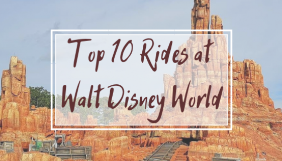 TOP 10 RIDES DISNEY WORLD